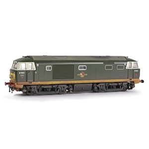 Class 35 'Hymek' D7021 BR Green (Small Yellow Panels) [W]