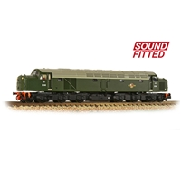 N scale Class 40 Disc Headcode D248 BR Green (Late Crest)